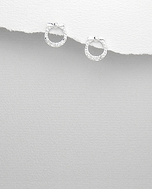 <b>Fine silver - white zirconia earrings</b>