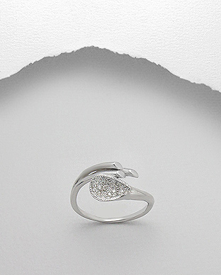 <b>Special silver and zircon ring</b>